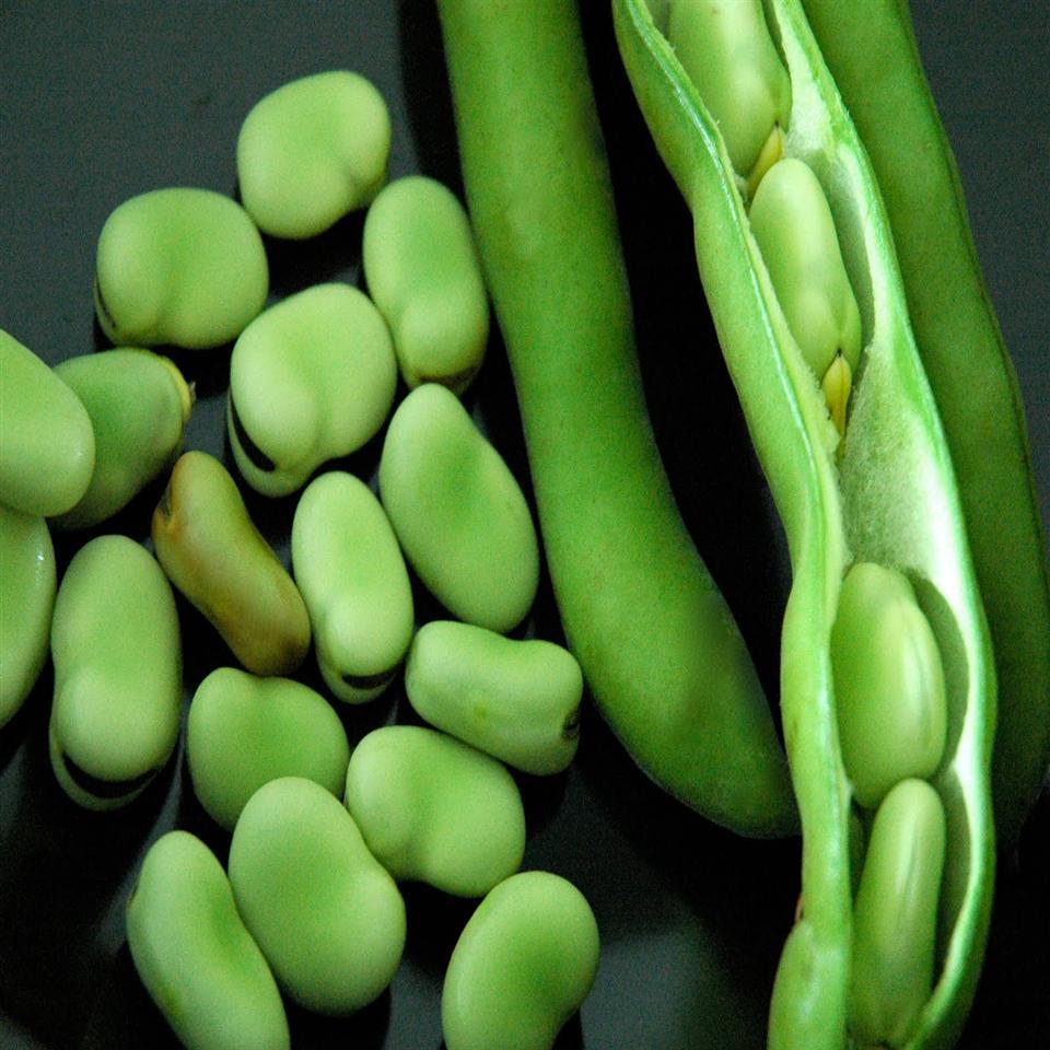 Meze Fava Beans