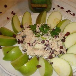 Autumn Chicken Salad SANDI149