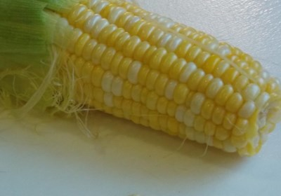 Easiest Corn on the Cob