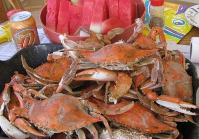 Steamed Blue Crabs
