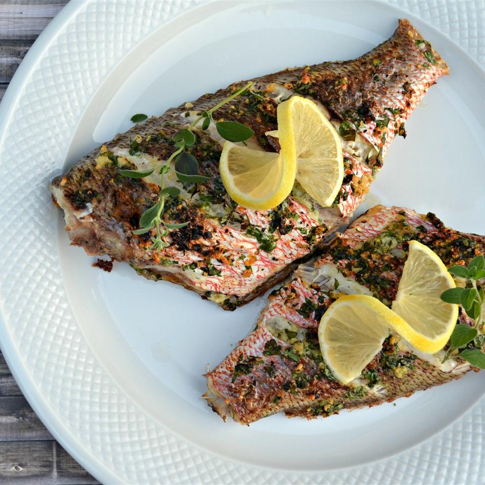 Mediterranean Red Snapper - Printer Friendly