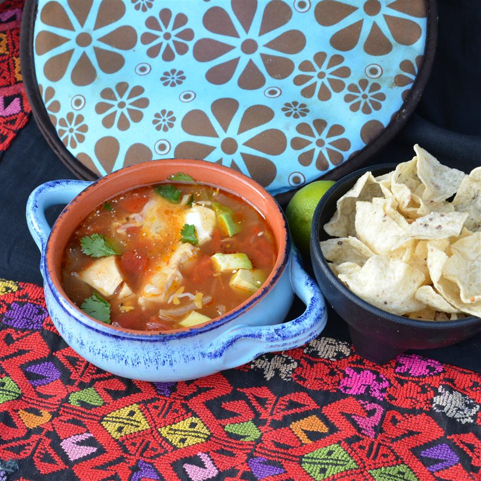 The World's Best Tortilla Soup Velveteen Lion