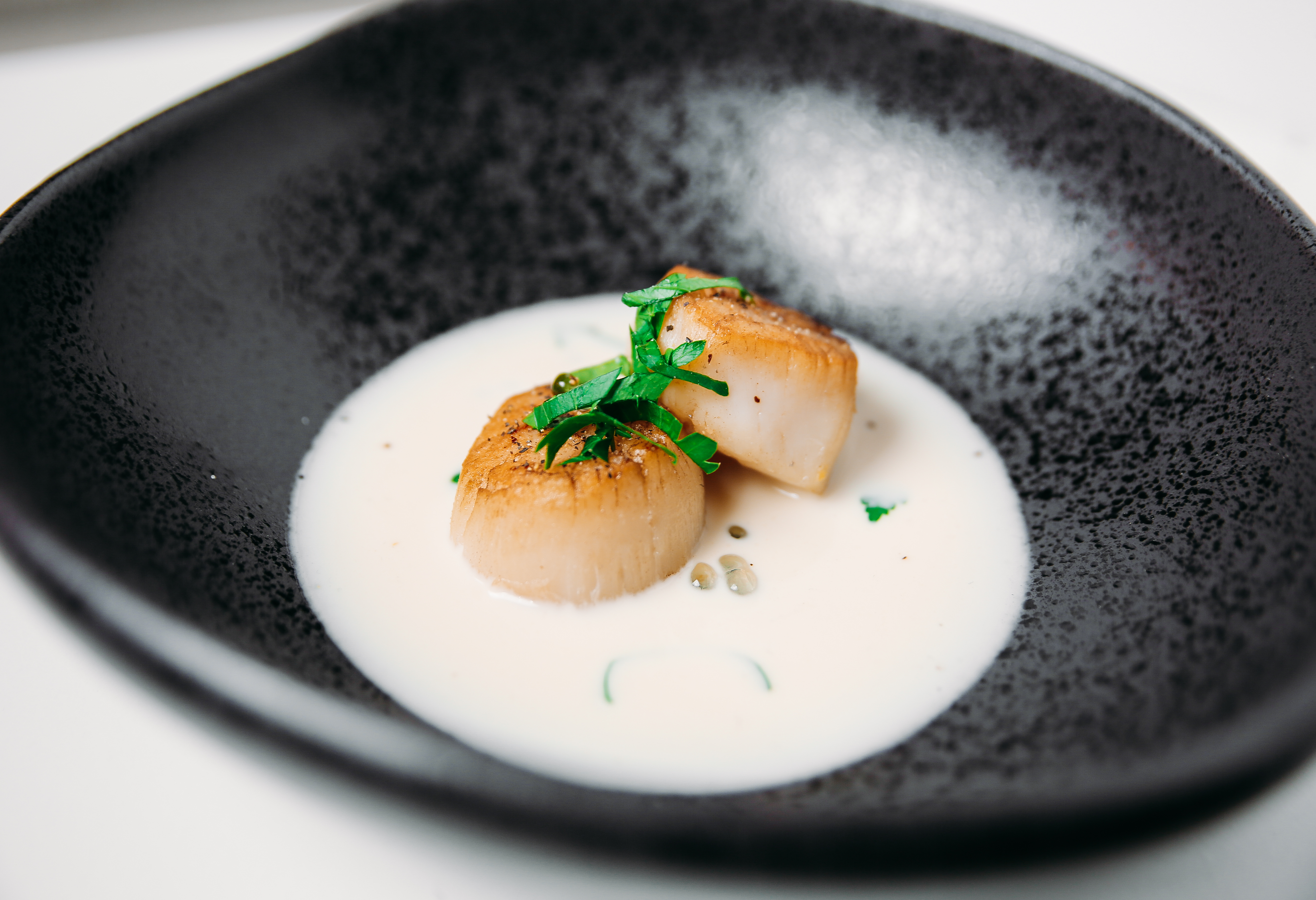 Scallops with Roasted Garlic Cream Sauce