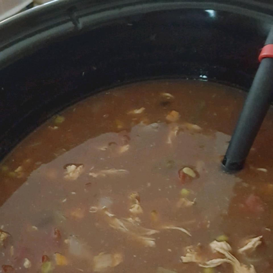 Slow Cooker Chicken Enchilada Soup Daneil Kacer