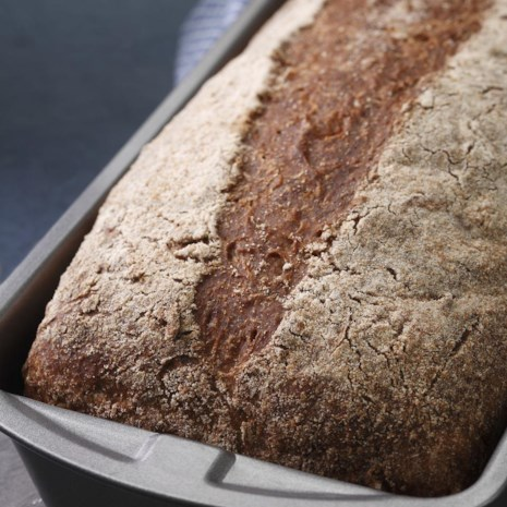 Everyday Whole-Wheat Bread