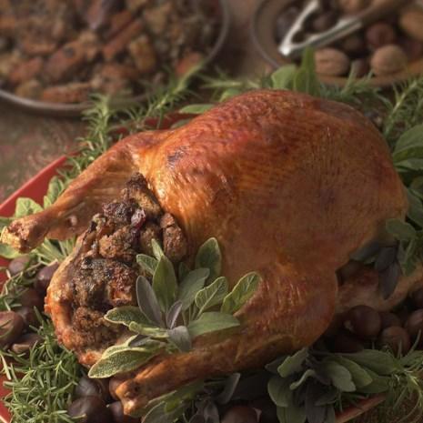 Roast Turkey with Chestnut Stuffing