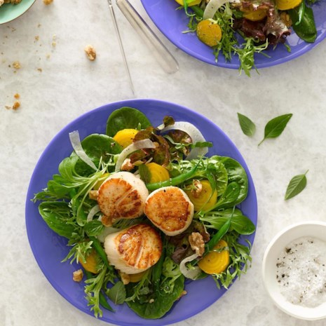 Golden Beet, Green Bean & Fennel Salad with Scallops