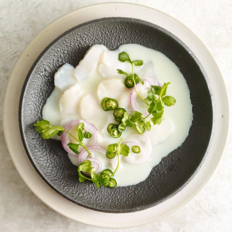 Scallop Aguachile with Coconut