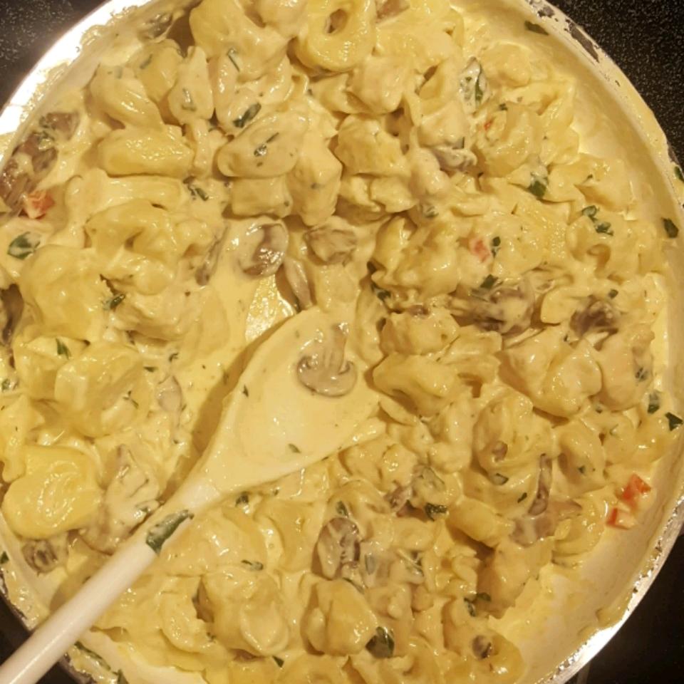 Easy Chicken Pasta Alfredo CaseyK