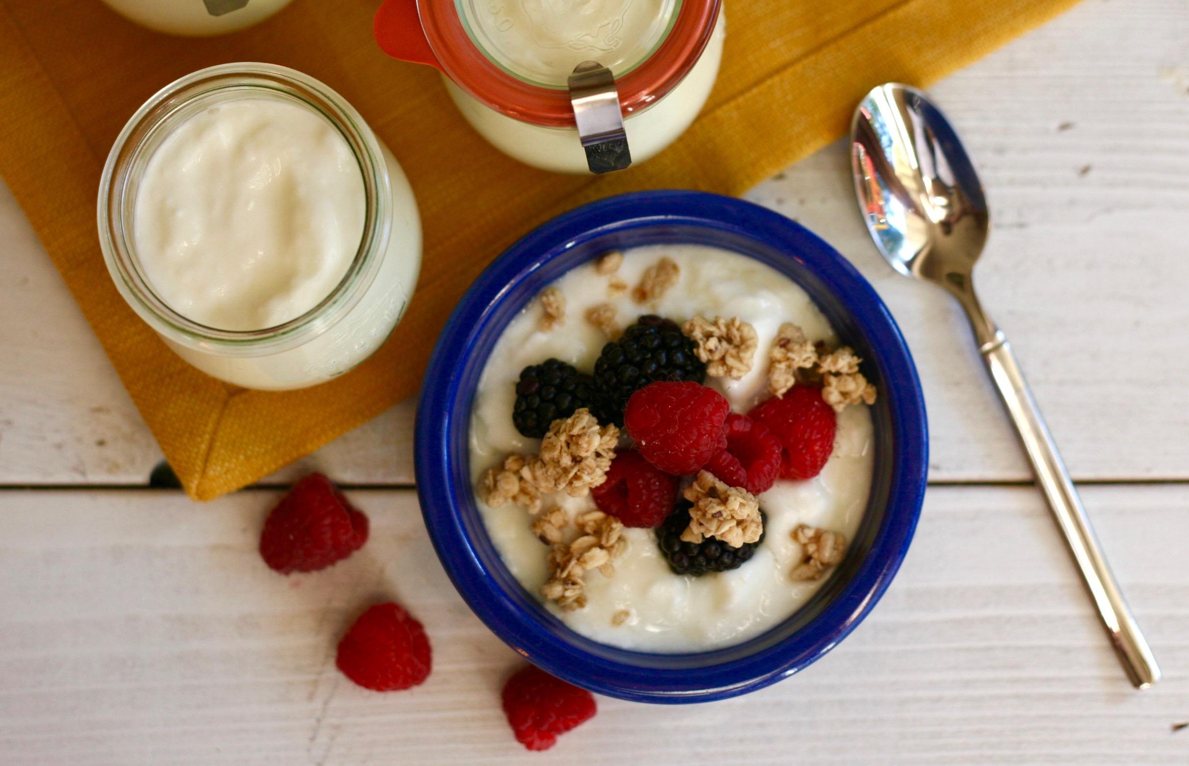 Traditional Homemade Yogurt image