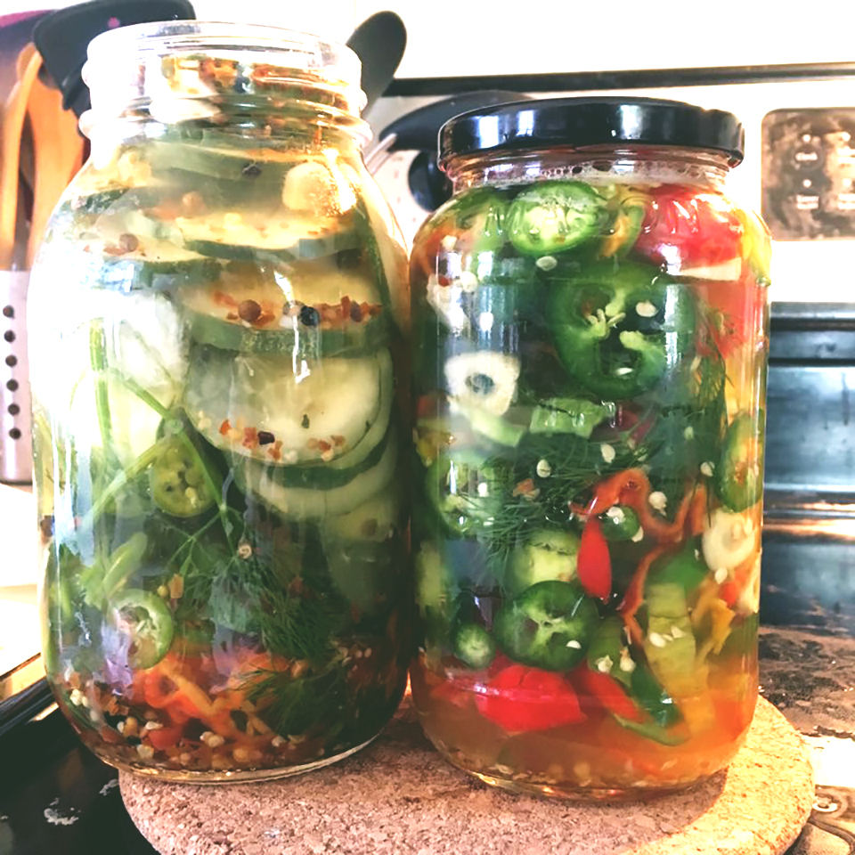 Spicy Dill Pickles image