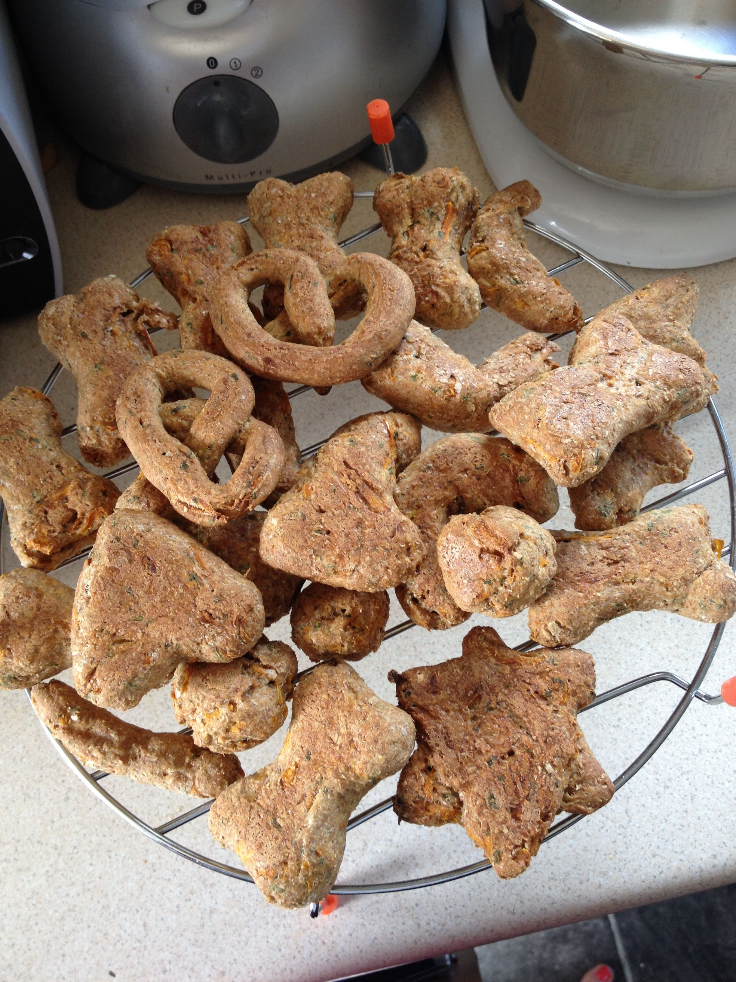 Homemade Healthy Dog Treats with Carrot and Parsley