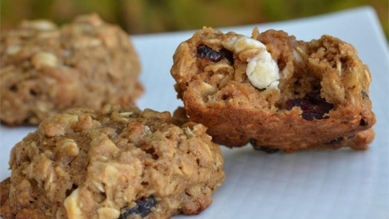 Photo of Cran Oat Cookies by VenturaMama77