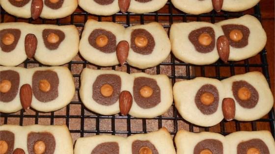 Photo of Hoot Owl Cookies by Lisa