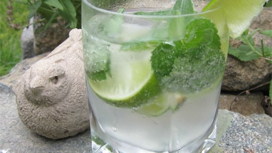 Photo of Mojito Perfecto by Alycia Trapp