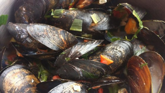 Photo of Patti's Mussels a la Mariniere by Patti