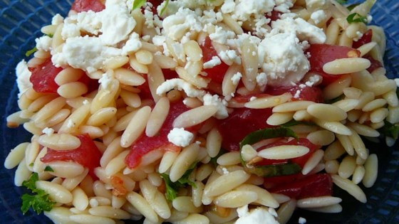 Photo of Orzo and Tomato Salad with Feta Cheese by COZYCUISINE