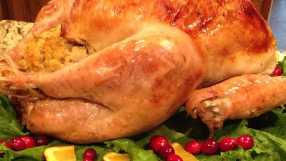 Photo of Homestyle Turkey, the Michigander Way by Robin C.