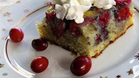 Photo of Fresh Cranberry Cake by Deborah Day