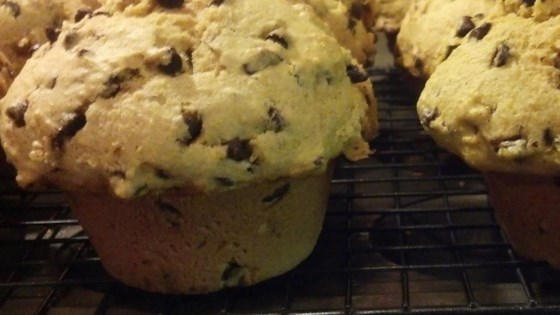 Photo of Pumpkin Gut Chocolate Chip Muffins by slyorkie