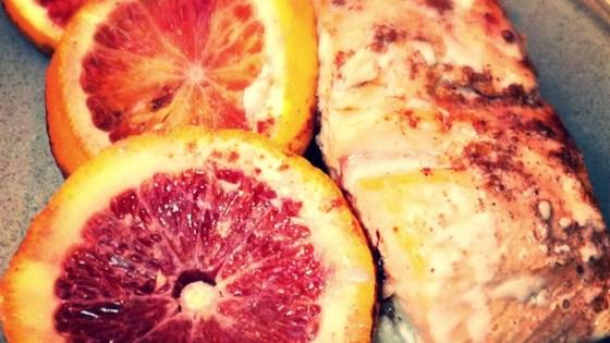 Photo of Orange Salmon by CHRISTYJ