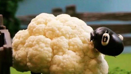 Photo of Cauliflower Sheep by Allrecipes