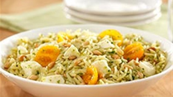 Orzo Pasta Salad with Basil Pesto, Cherry Tomatoes and Fresh Mozzarella