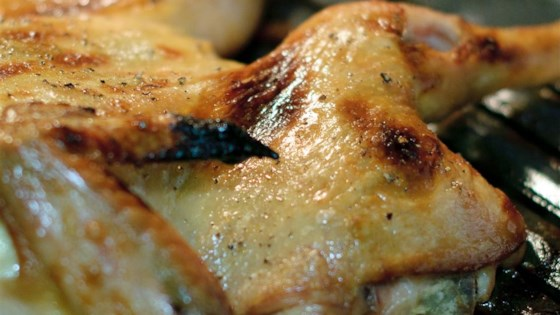 Photo of High Roast Chicken by carabakescupcakes