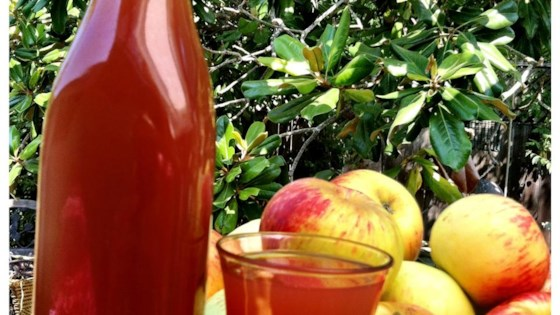 Photo of Homemade Apple Cider by scollins