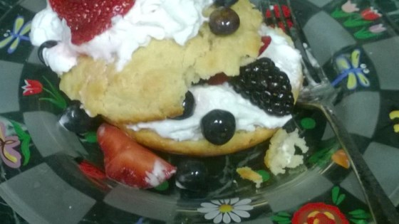 Photo of Summer Fruit Shortcakes by MICHELLE0011