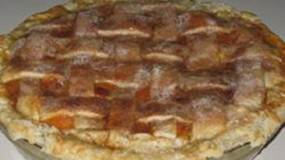 Photo of Rustic Apricot Pie by luv2cook