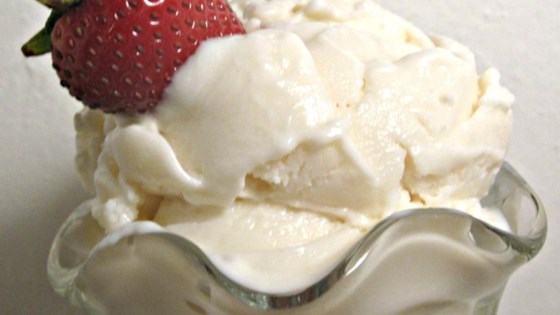 Photo of Vanilla Frozen Yogurt by TeenChef14
