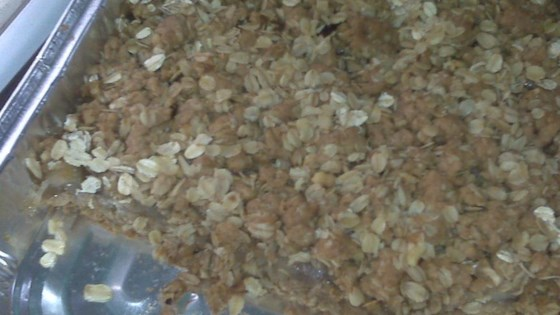 Photo of Apple Oatmeal Bars by DEANMONA
