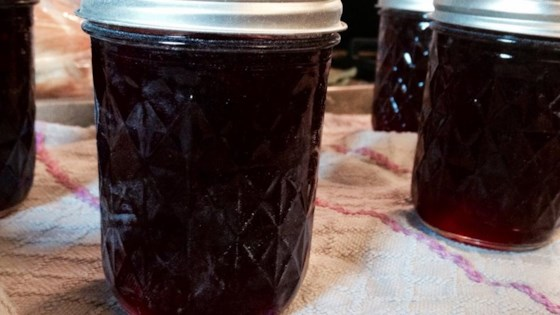 Photo of Concord Grape Jelly by SWIZZLESTICKS