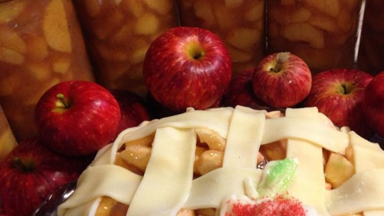 Photo of Canned Apple Pie Filling by rhonda