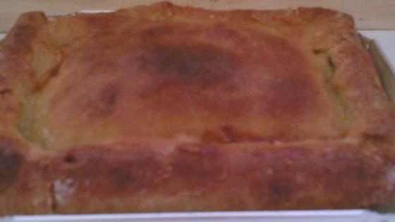 Photo of Butternut Pie Crust by PaulaM11
