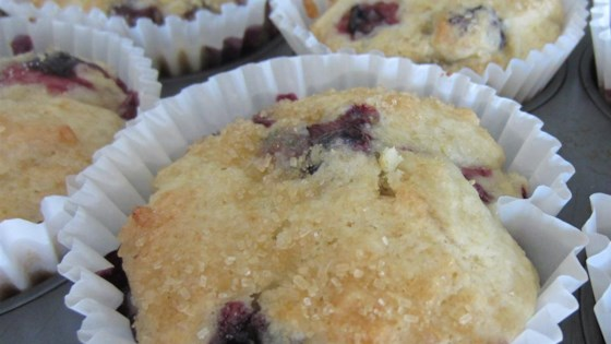 Photo of Ricotta-Blueberry Muffins by Annie