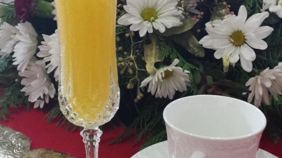 Photo of Holiday Mimosa by SILVREZS