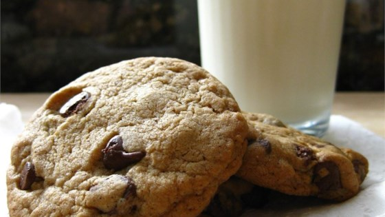 Neiman Marcus Chocolate Chip Cookie Recipe Allrecipes Com