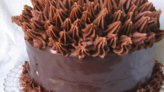 Photo of Elizabeth's Extreme Chocolate Lover's Cake by ELIZABETHBH
