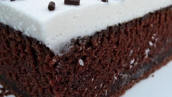 Photo of Chocolate Mayonnaise Cake I by Cyndie