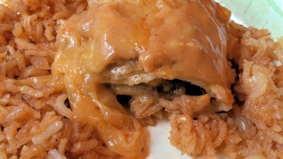 Photo of Quick and Easy 4-Ingredient Enchiladas by Ritak96