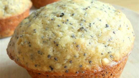 Photo of Applesauce Orange Poppyseed Muffins by akdgurl
