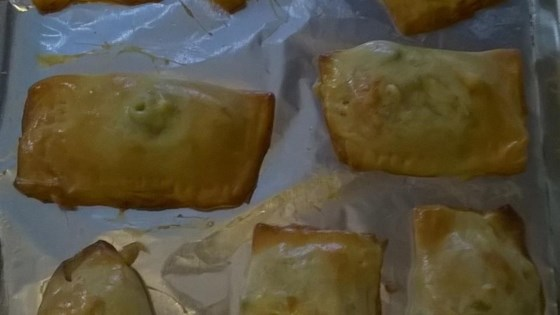 Photo of Tasty Hand-Held Chicken Pot Pie Pockets by Roxbury-Brower