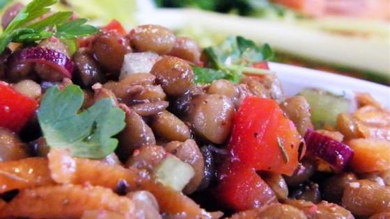 Photo of Summer Lentil Salad by MrCastan0