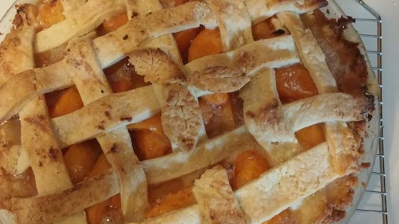 Photo of Apricot Pie by snowflake