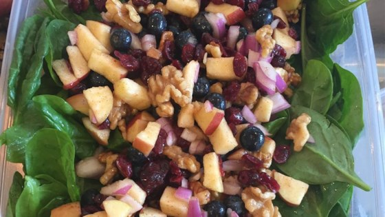 Photo of Thanksgiving Spinach Salad by J. Dub