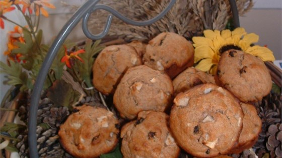 Photo of Whole Wheat Apple Muffins by JJOHN32