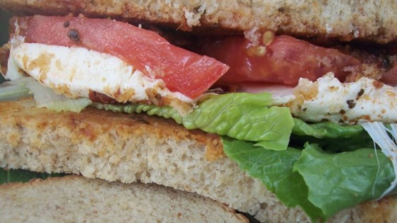 Photo of Smoked Mozzarella and Pesto Sandwich by veggigoddess