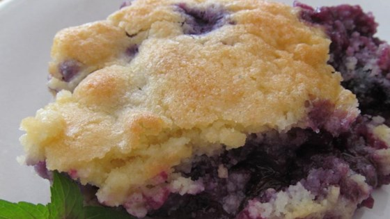 Photo of Best Ever Blueberry Cobbler by Jen